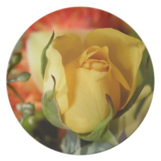 Yellow Rose Dinner Plates
