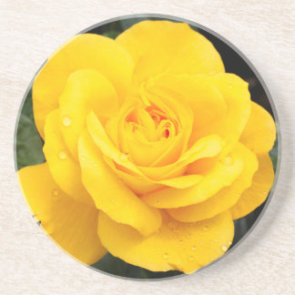 Yellow Rose Drink Coaster