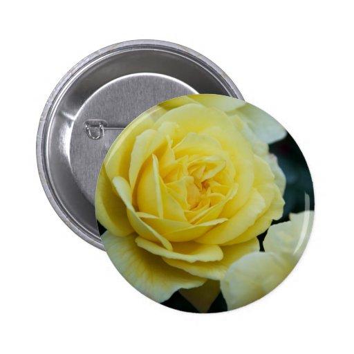 Yellow Rose DSC3677 2 Inch Round Button