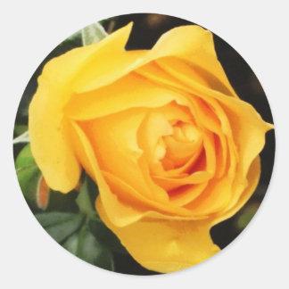 'Yellow Rose' Envelope Seal