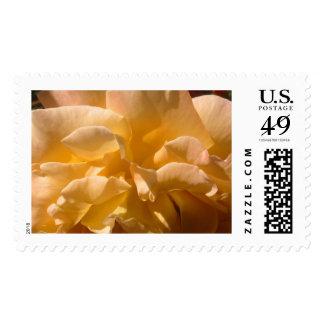 Yellow Rose Flower Carousel Parade Postage Stamp