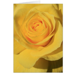 Yellow Rose Flower Greeting Card,Note Card