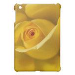 Yellow Rose Flower iPad Mini Cases