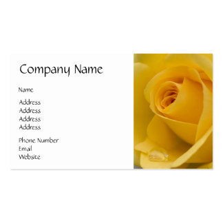 Yellow Rose Flower Pack Of Standard Business Cards