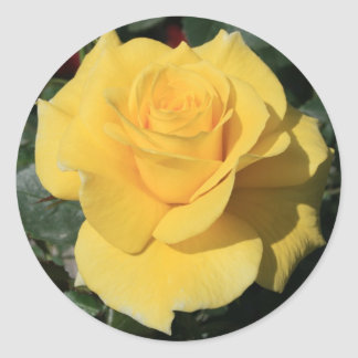 Yellow Rose Flower Sticker