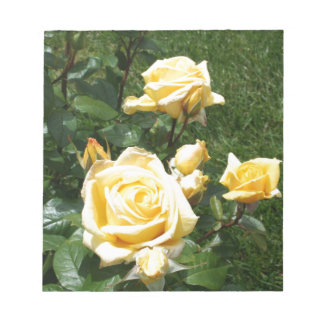 Yellow Rose Flowers Memo Notepads