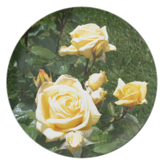 Yellow Rose Flowers Plate
