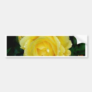 Yellow Rose fresh peace love Bumper Sticker