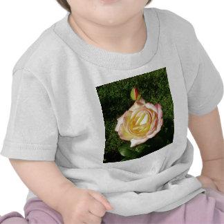 Yellow Rose Garden T-shirt