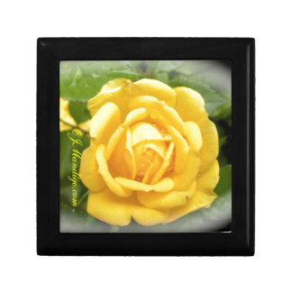 Yellow Rose Gift Box