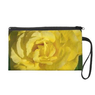 Yellow Rose in Bloom Wristlet Purse