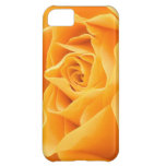 Yellow Rose iPhone 5C Cover