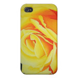 Yellow Rose iPhone Case iPhone 4 Covers