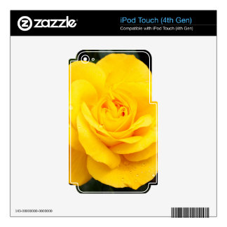 Yellow Rose iPod Touch 4G Decal
