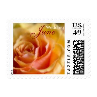 Yellow Rose • June Wedding Stamp