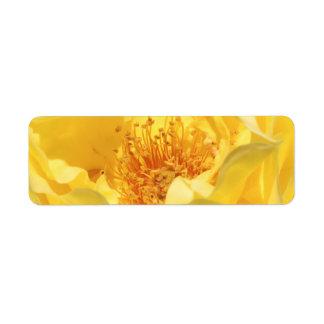 yellow rose label