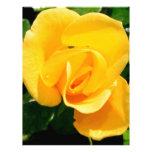 Yellow Rose of Friendship Letterhead Design