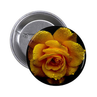 Yellow Rose of Love Pins