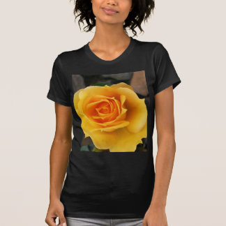 Yellow Rose of Love T-shirts