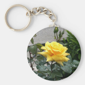 Yellow Rose of Texas Basic Round Button Keychain
