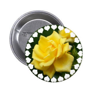 Yellow Rose of Texas Buttons