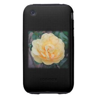 Yellow Rose, on black background. iPhone 3 Tough Cover