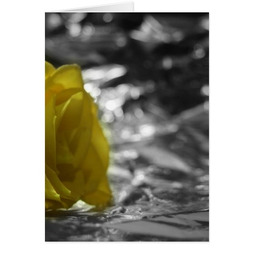 Yellow Rose On Left Side Silver Background Cards