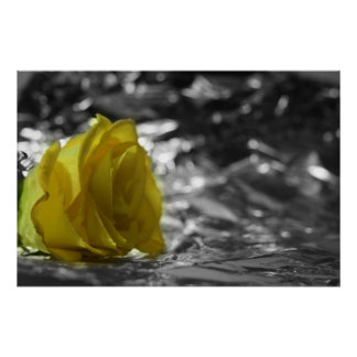 Yellow Rose On Left Side Silver Background Poster