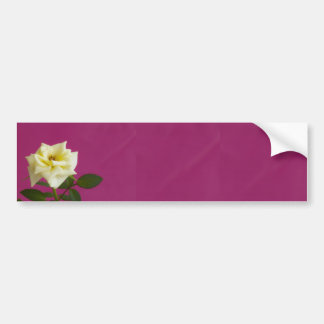 Yellow rose on pink background bumper sticker