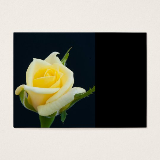 Yellow rose on the black background business card