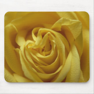 Yellow rose pad mouse pad