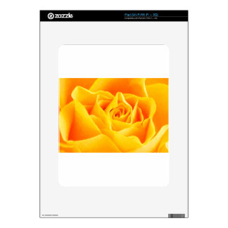 Yellow rose painted iPad decal