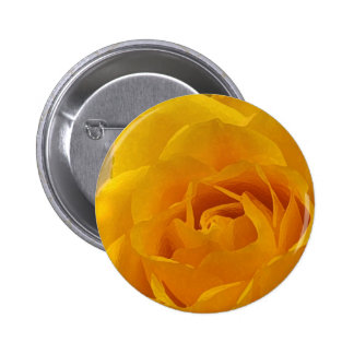 Yellow Rose Petals Button