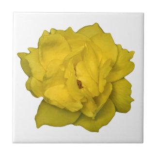 Yellow Rose Photo Print Ceramic Tile