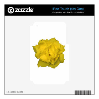 Yellow Rose Photo Print Decal For iPod Touch 4G