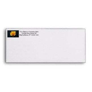 Yellow Rose photograph against dark background Envelopes