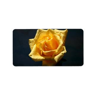 Yellow Rose photograph against dark background Address Label