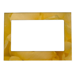 Yellow Rose Picture Frame Magnetic Photo Frames