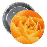 Yellow Rose Pins