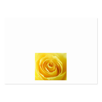 Yellow Rose - Place Cards Business Card Template