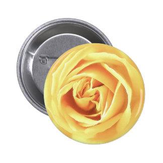 Yellow rose print button