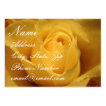 Yellow Rose, Profile Card Business Card Templates