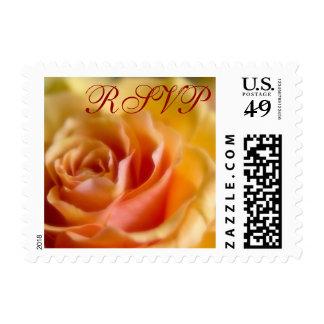 Yellow Rose • RSVP Stamp