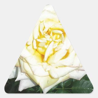Yellow Rose Triangle Sticker