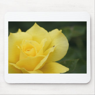 Yellow Rose with a Guest Mouse Pad