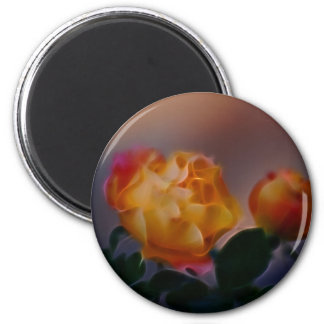 Yellow rose with pink and meaning magnet