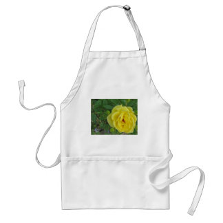 Yellow Rose with Raindrops Adult Apron