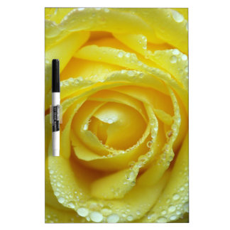 Yellow Rose with Water Drops Dry-Erase Boards