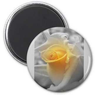 Yellow Rosebud Grayscale 2 Inch Round Magnet