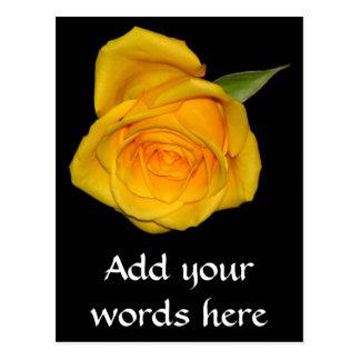 Yellow Rosebud Postcard